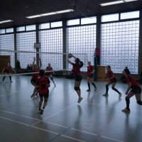 Volleyball Galerie